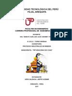 Monografia Procesos Industriales (3)