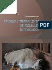 3.6 Manejo y Tratamiento de Animales Intox