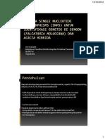 snp.pdf