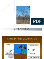 Presentación Nogales Tecnobac