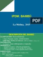 2015-IPDM-06-Bambu