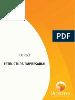 COPASO.pdf