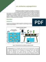 Diseño de Un Sistema Aquapónico