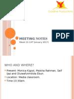 Meeting Notes Week 16