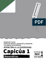 Capicua01cast_Diversitat.pdf