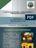Anatomia Vegetal (1)