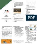 Leaflet DHF LYANA.docx