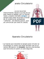 A. Circulatorio