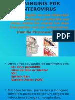 Meninginis Por Enterovirus