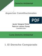 Constitucional_2007
