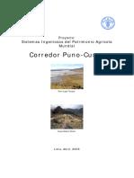 cuenca cusco.pdf