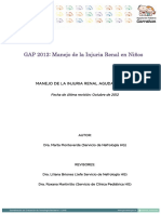 GAP-2012-IRA