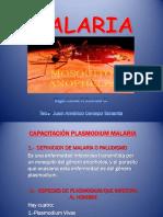 CpctcnP,Flcprm