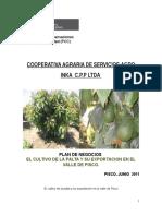 Plan de Negocio Agroinka PCC 2011
