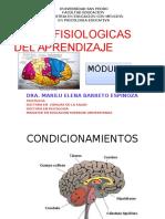 Introducccion Bases Fisiologicas Del Aprendizaje Modulo i