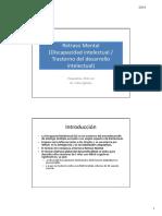 Psiq-T24-Discapacida Intelectual_2014.pdf