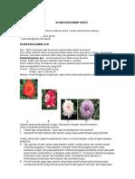 Tugas Bio Keanekaragaman