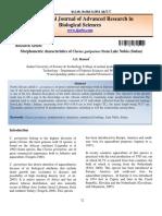 CATFISH CLARIAS GARIEPINUS.docx22.pdf
