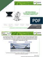 Metodologias de Valoracion Econom de Daños Ambientales