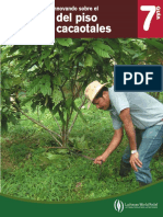 19 Guia 7 Manejo Del Piso de Cacaotales