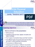 4. Joints Tendons and Ligaments.ppt
