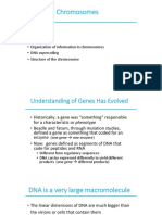 Organisation of Genomes