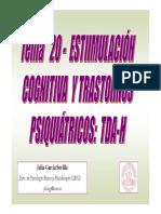 20. ESTIMULACION TDAH PPT.pdf
