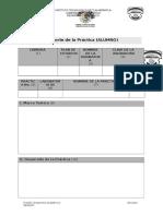 Formato de Practicas Para Institutos Tecnologicos