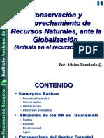 Los RNR y La Globalización v-2 Congreso Agronomia