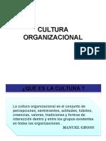 2 - Cultura Organizacional