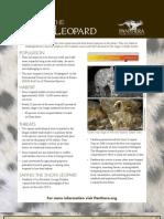 Snowleopard Update