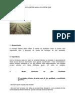 70438166-Apostila-Producao-Hortalicas-Ufla.pdf