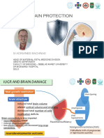 Fetal Brain Protection in Iugr