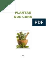 Livro Plantas Que Curam
