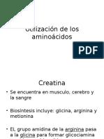 Utilizacion de Los Aminoacidos