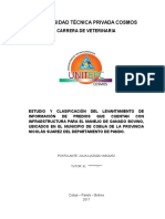 Perfil Tesis Julia Luizaga Corregido