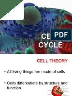 3b - Cell Replication