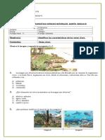 diagnostico ciencias 2016 quinto  basico.doc b.doc