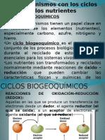 CICLOS BIOGEOQCOS.pptx