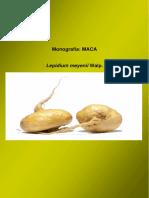 74076549-Monografia-MACA.pdf