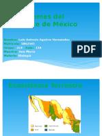 Ecosistema Del Noroeste de México