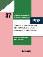 Derechos Humanos Democracia