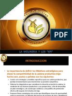 KPI ° S.pdf