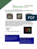 farofias na sala de aula.pdf