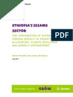 Ethiopia's Sesame Sector