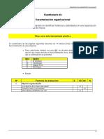Cuestionario caracterizacion organizacional