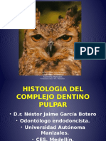 Histologia Del Organo Dentinopulpar