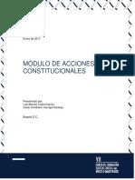 Módulo 10 - Acciones Constitucionales - Tomo III