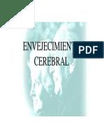 Clase Envejecimiento Cerebral.pdf
