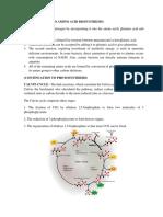 Biosynthesis Part 2
